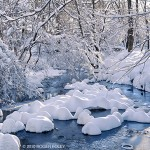 Roger Foley's Winter Photography
