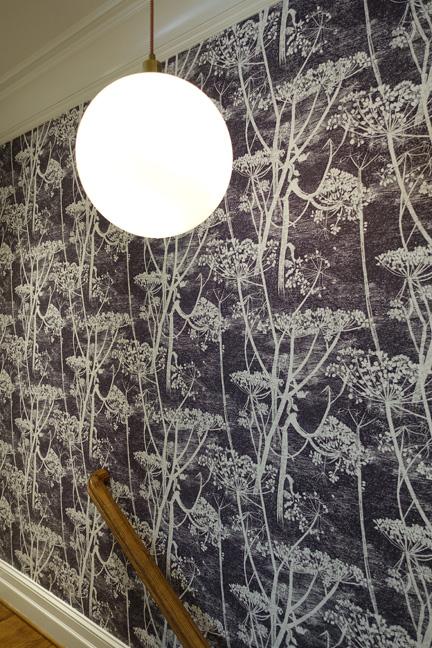 lightpluswallpaper