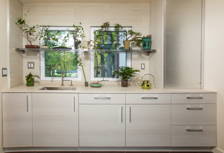 bonsai-feature