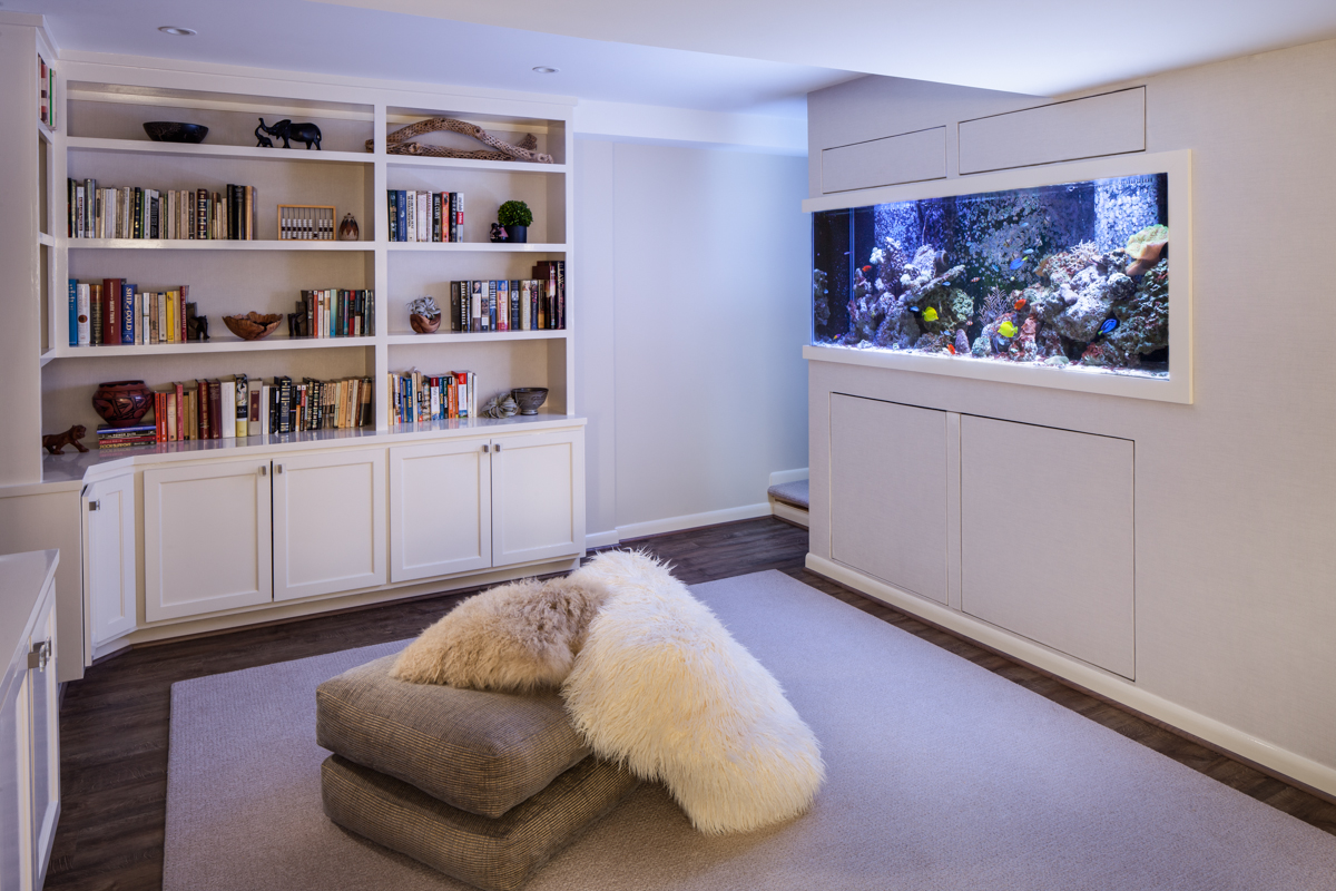 After shot of aquarium wall