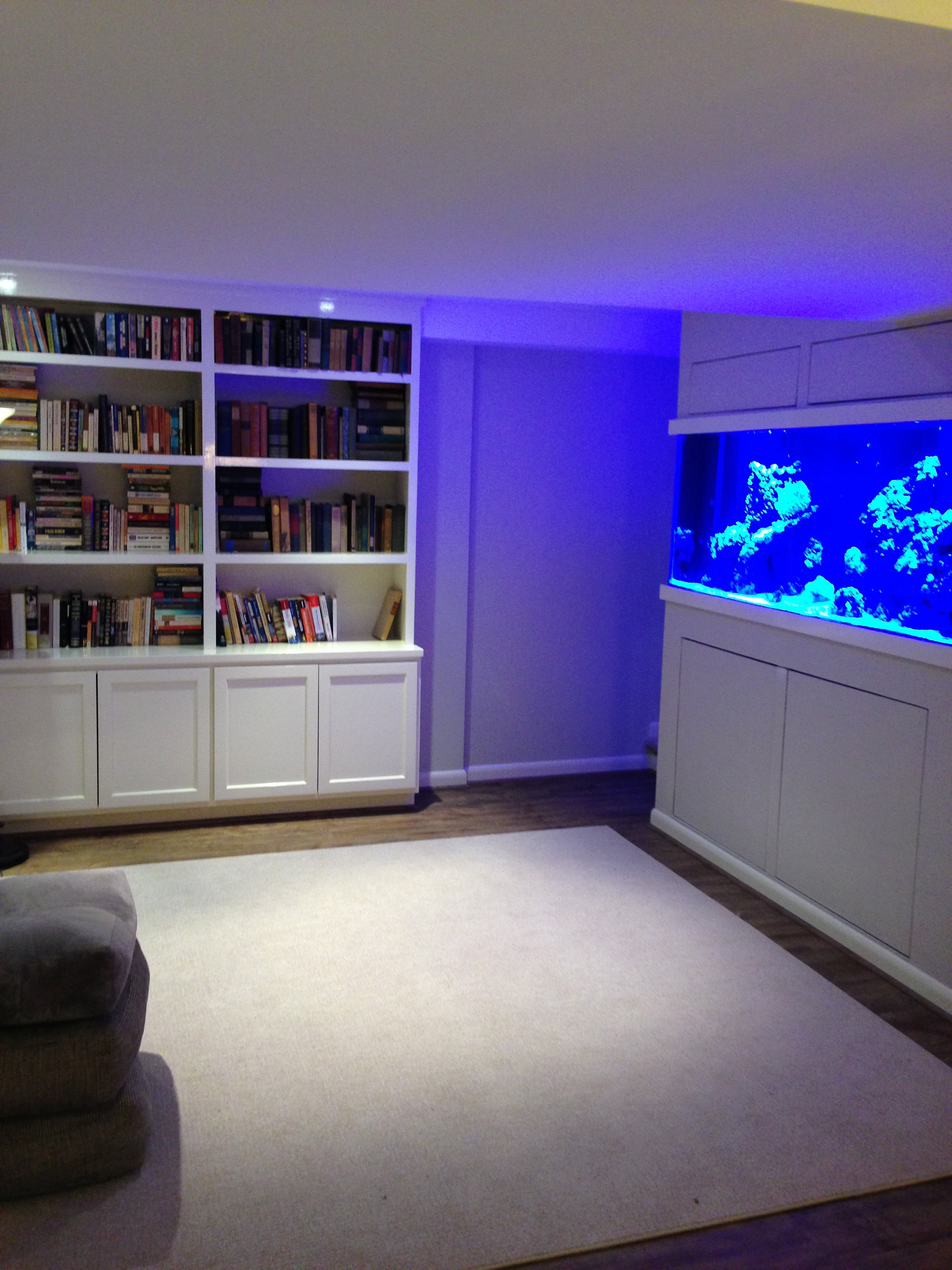 The completed aquarium wall