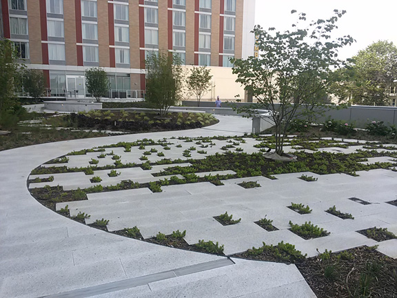 THis courtyard is expecting a waterfall to be installed soon, along with a new location for Mintwood Place restaurant.